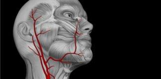 lesões em veias do pescoço