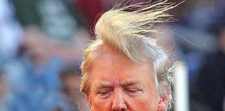 penteado-de-donald-trump