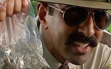 Policia Argentina perde meia tonelada de cannabis