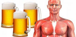 Beber cerveja diariamente é mais saudável