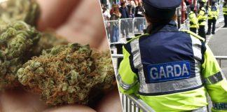Homem leva erva à policia