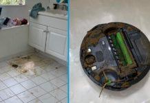 Aspirador robótico passa por cocó de cão
