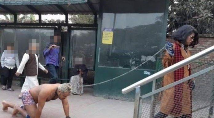 Mulher vista a passear com o marido por uma trela