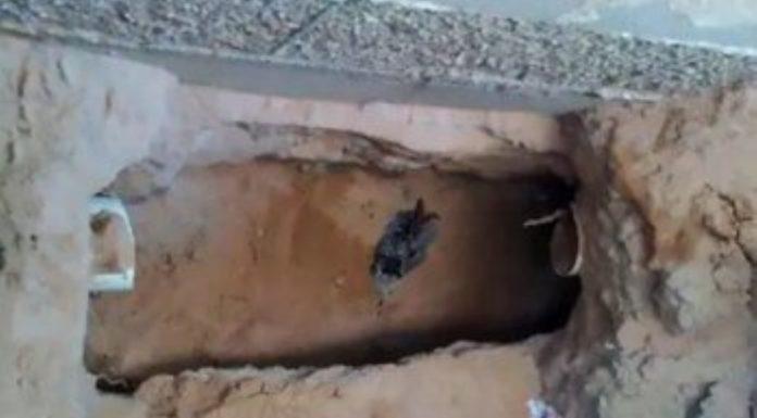 Homem escava túnel até casa de strip