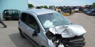 Carro falece após ser atropelado por duas obesas