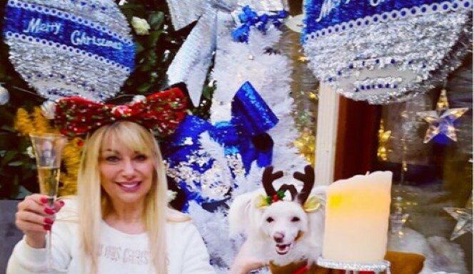 prendas de Natal para cão